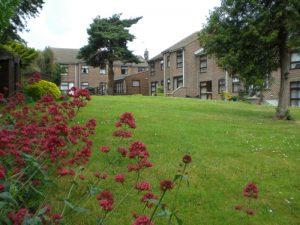 flats-from-garden